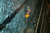 Thumbnail for Colorado College Women's Water Polo. 2005. JR9D1489