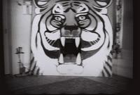 Thumbnail for Campus Scenes 14, Tiger mascot