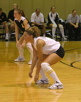 Thumbnail for Women's Volleyball Brochure Photos. Fall 2005. n03Ferrington4500