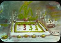 Thumbnail for Antelope altar, Mishongovi (photo of drawing): C8