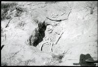 Thumbnail for Grave at Poole's Well showing skeleton: E93
